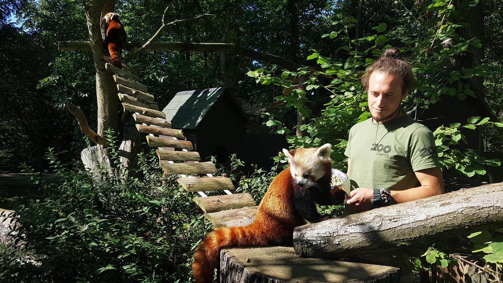 Međunarodni dan timaritelja: Razotkrivanje superjunaka u brizi za životinje