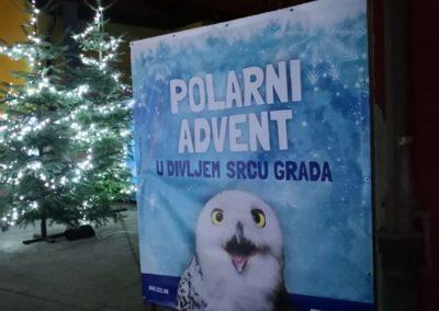 Avent Zoo subota 7122019 (16)