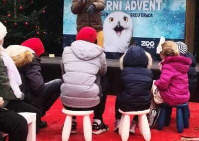 Avent Zoo subota 7122019 (2)