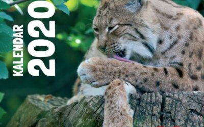 Kalendar za 2020. godinu -CARE u srcu