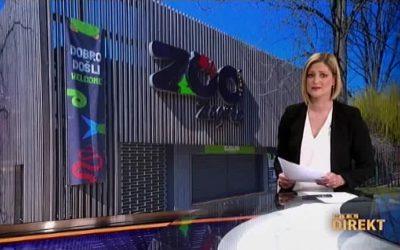 RTL Direkt 17. 3. 2020. – Zoološki vrt bez posjetitelja