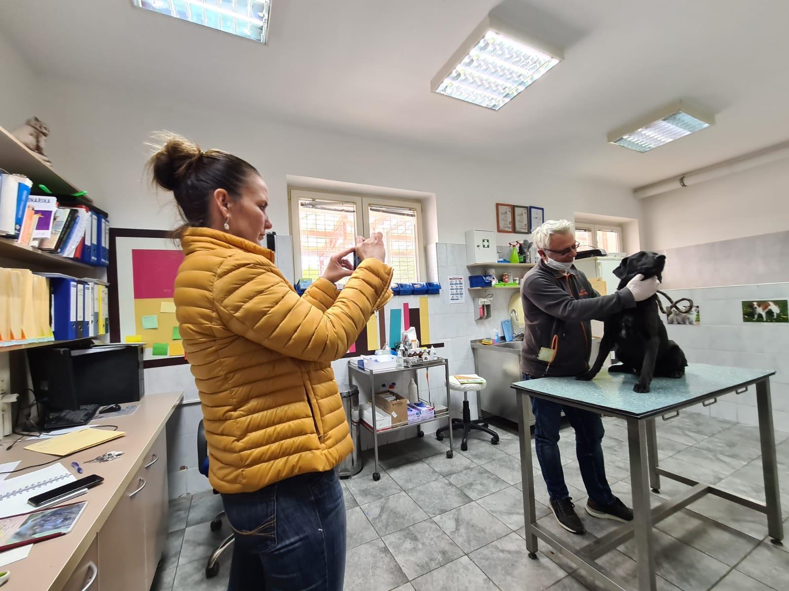 """Djelatnici Zoološkog vrta, """"Dumovca"""" i Spomengaja otpjevali pjesmu Lupi petama"""