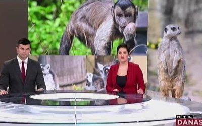 RTL Vijesti o darivanju pisanica životinjama
