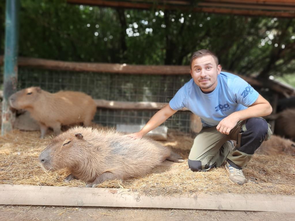 Svjetski dan zaštite životinja i Međunarodni dan timaritelja