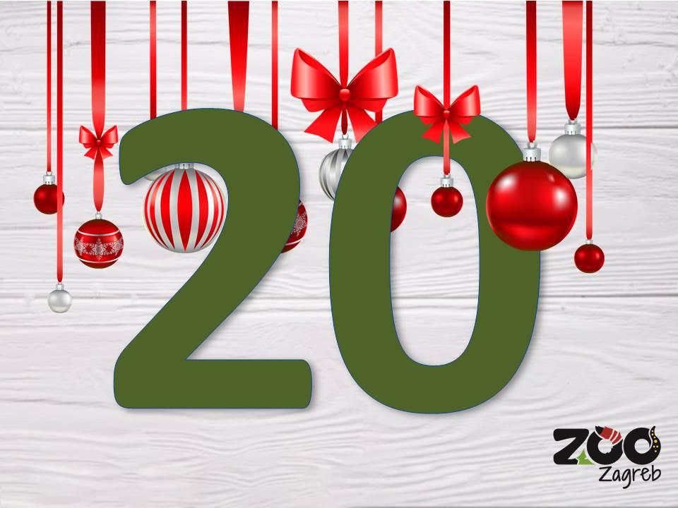 Zoo adventski kalendar: Vidre u potrazi za ribom