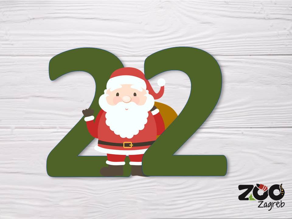 Zoo adventski kalendar: Zebrasti miševi s kutijom