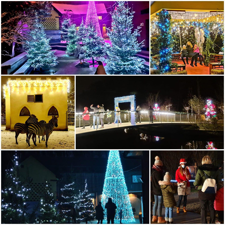 Više od 40.400 građana uživalo u Polarnom adventu u Divljem srcu grada